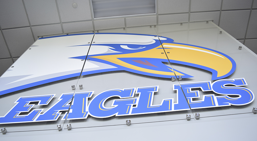 Custom Sports Logo Feature Wall Fixture by Pensacola Sign
