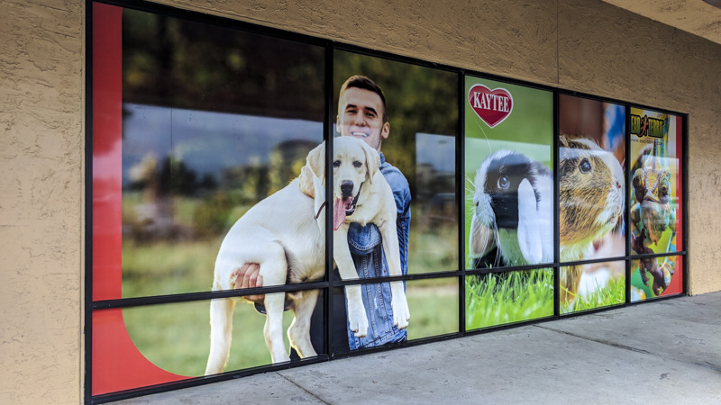 Petland window wraps by Pensacola Sign
